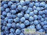 大兴安岭蓝莓 蓝莓干