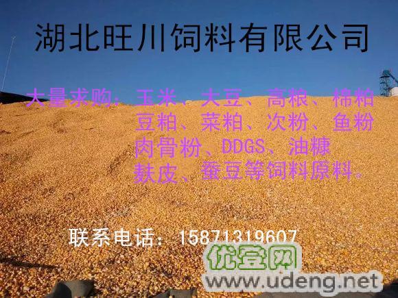 玉米、高粱、大豆、棉粕